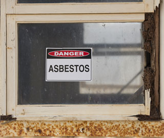 asbestos and lead paint assessment