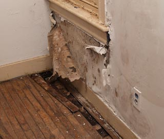 water intrusion